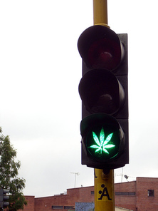 Pot traffic light