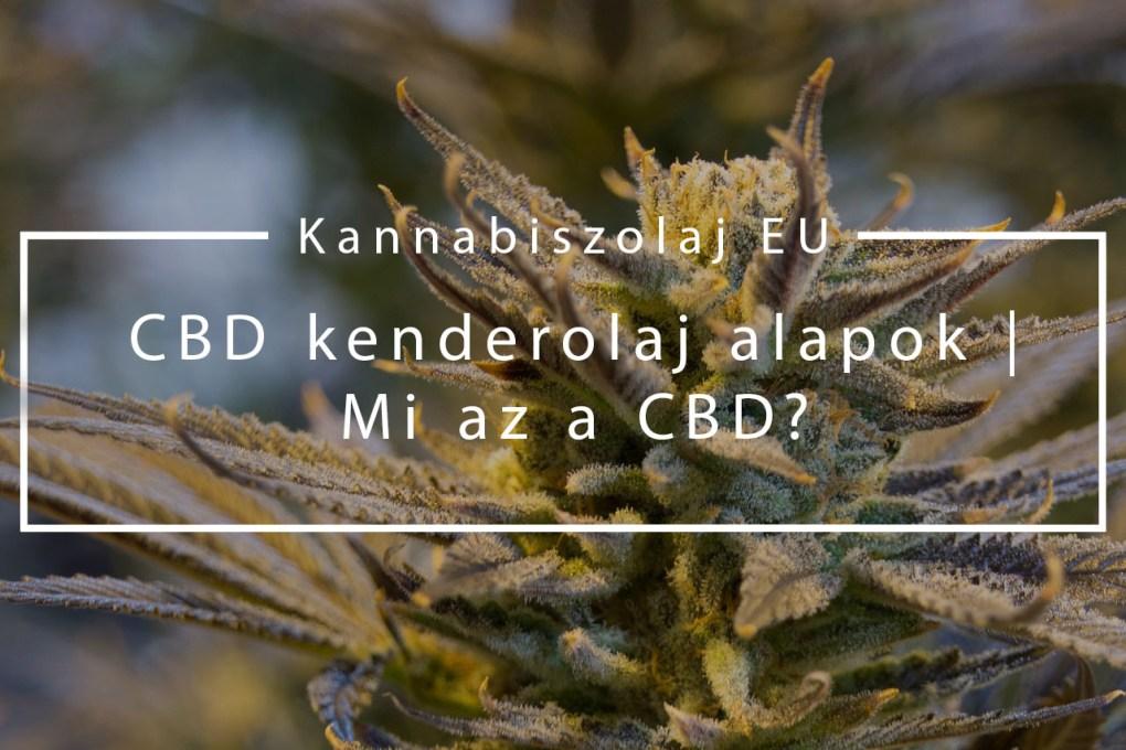 (Kannabiszolaj EU) CBD kenderolaj alapok - Mi az a CBD