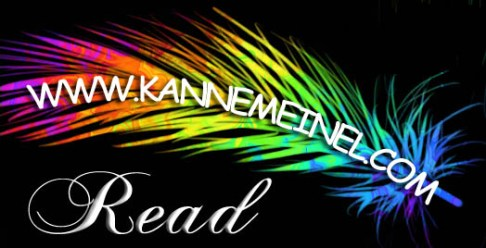 Rainbow Feather www.kannemeinel.com READ