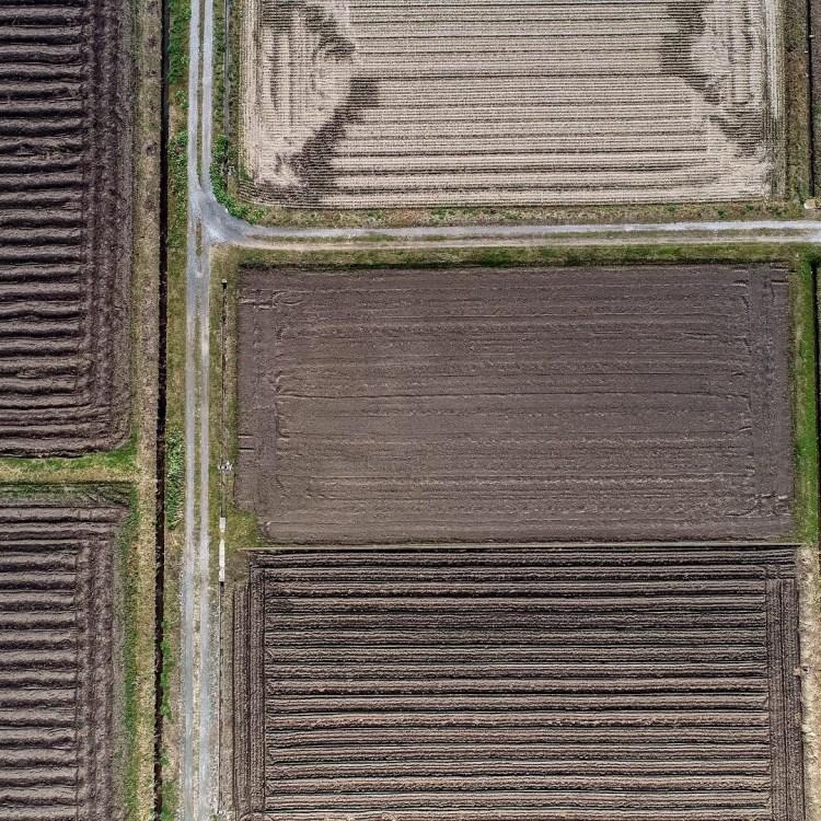 田んぼを上空から撮影 滋賀県長浜市のドローン空撮滋賀