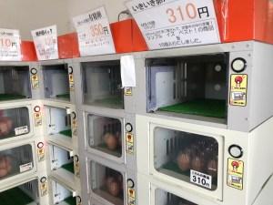 山ちゃんのたまご屋さん 卵の直売所
