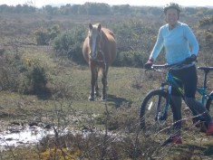 Cycling with the Ponies