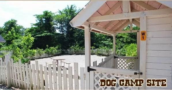 栃木県のドッグフリーサイトがあるキャンプ場「キャンプアンドキャビンズ那須高原」