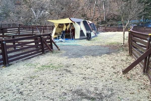 ウエストリバーオートキャンプ場 ドッグフリーサイトAの広さ
