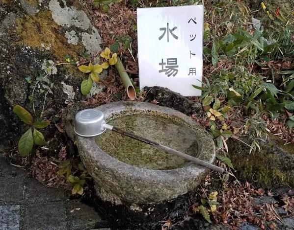 愛犬と一緒にお詣りできる伊豆高原の神祇大社のペット用水場