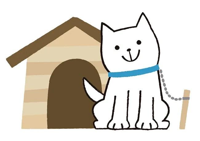 犬の外飼いは良いのか悪いのか