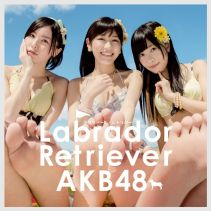 Akb48 Labrador Retriever 4 Limited