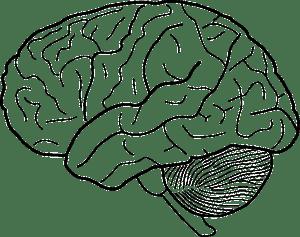 小脳機能低下による腰痛