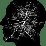 トラウマによる脳の傷