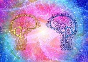 右脳と左脳のバランス