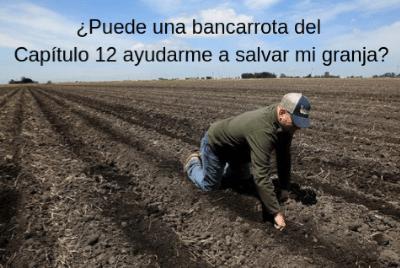 ¿Puede una bancarrota del Capítulo 12 ayudarme a salvar mi granja?