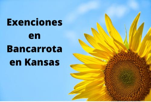 Exenciones en Bancarrota en Kansas