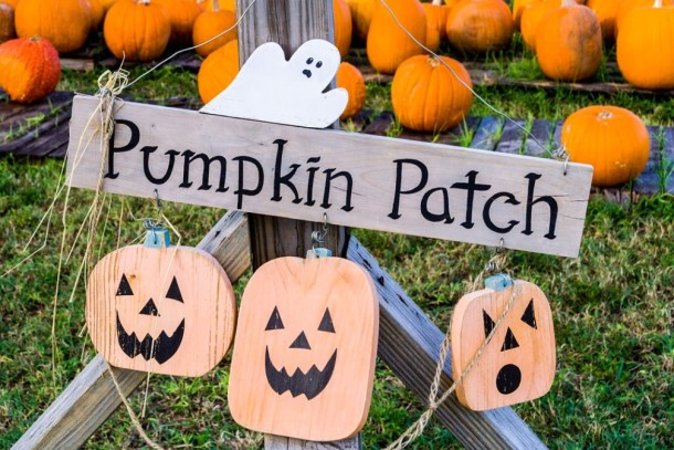 Free Halloween Activities 2020 In Kansas City Kansas City Pumpkin Patches, Corn Mazes & Hayrides 2020   Kansas