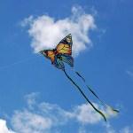 Kite Fest on the Prairie