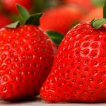 FREE Admission to Vaile Mansion Strawberry Festival