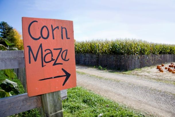 Kansas City corn mazes - sign pointing to corn maze field