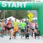 $5 registration savings for Strutt With Your Mutt walk/run