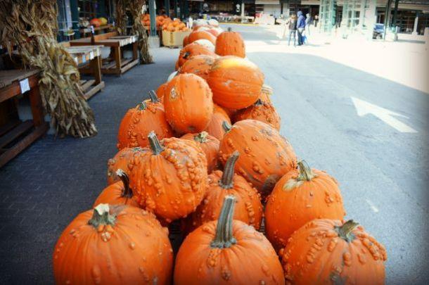 Kansas City u-pick farms - pile of pumpkins