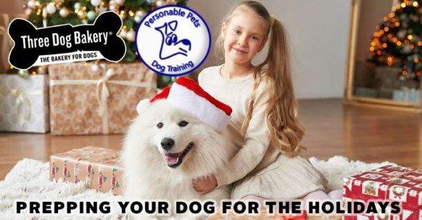 Free Dog Training in Kansas City - Dog with Santa hit sitting with young girl
