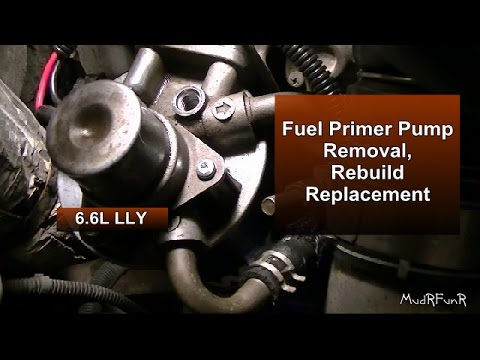 Fuel Primer Pump Removal, Rebuild & Assembly - LLY Duramax