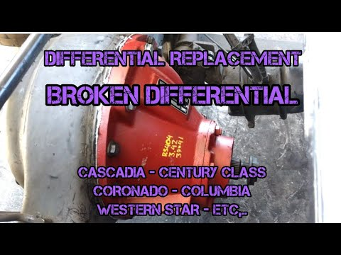 Freightliner Cascadia differential remove replacement Spicer 3.42 RS404 Coronado Columbia century
