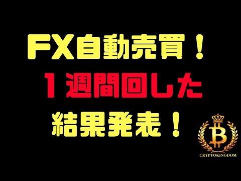 【月利20%】39週負け無しの、FX自動売買ツールを1週間回して見ました!