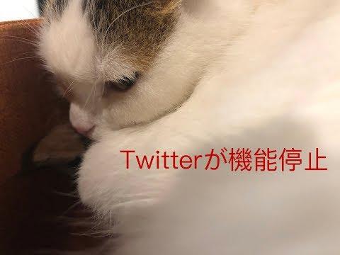 【重要なお知らせ】Twitterの投稿機能が停止されました。