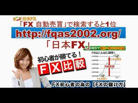 【日本FX】 楽天 fx FX 自動売買 ≪投資の知識不要!楽して100万円稼ぐ≫