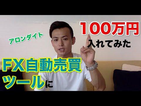 月利20%?FX自動売買ツール『アロンダイト』を100万円で運用した結果!