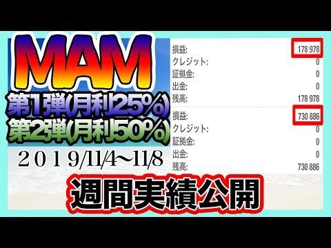 FXコピートレード、MAMの実績大公開!【11/4〜11/8の実績です】