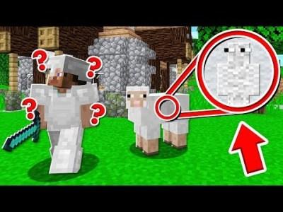 【マインクラフト】かくれんぼで羊の毛に隠れれば絶対にバレない説www【マイクラ実況】