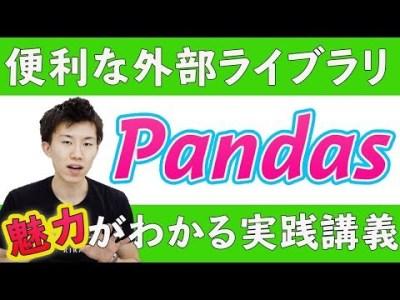 【vol.022】外部ライブラリ(Pandas) | 中学生でもわかるPython入門シリーズ