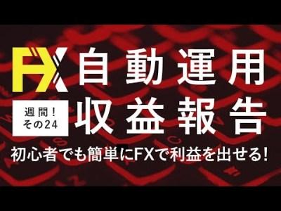 FX自動売買を超安定的にやる方法!収益報告24週目【簡単手軽】