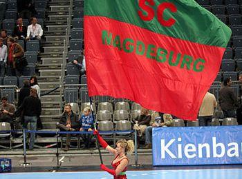 Der SC Magdeburg sucht einen Kanu-Rennsport Trainer