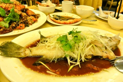 Steamed fish at Chuen Kee Sai Kung Hong Kong