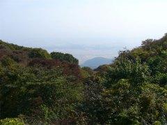 弥彦山からの蒲原平野