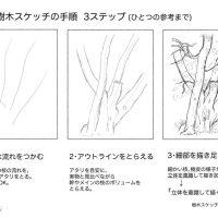 樹木スケッチ講座01