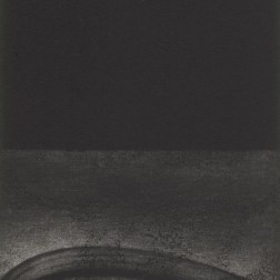 Sunfolwer seed 03・向日葵の種 03 Mezzotint・Etching メゾチント・エッチング image size H14.1cmxW9.7cm ed.30 2010