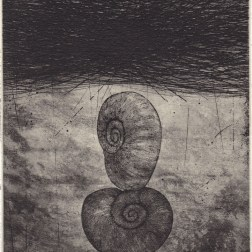 Shell 02・貝 02 Etching・Aquatint・Gampi-Paper(Mino) エッチング・アクアチント・雁皮刷り・美濃和紙 image size H14.3cmxW11.4cm ed.30 2012