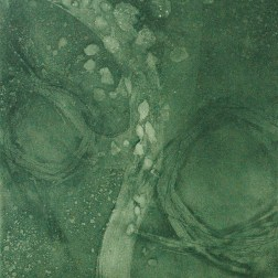 Flowing-3GR2 Etching・Drypoint・ Aquatint・BFK Rives・Gampi-Paper(Mino) エッチング・ドライポイント・アクアチント・BFK紙・雁皮刷り・美濃和紙 image size H30cmxW27.4cm ed.12 2017