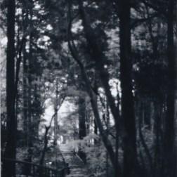 The stairwayGelatin Silver print