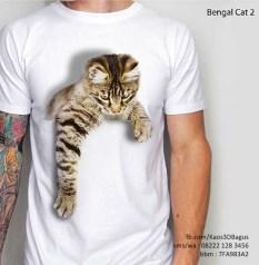 Kaos Gambar Kucing 3D