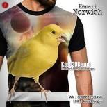 Kaos KENARI NORWICH, Kaos GAMBAR BURUNG, Kaos3D KICAU MANIA, Canary, Kaos3D