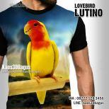 Lutino, Kaos LOVEBIRD LUTINO, Kaos BURUNG Kicau, Kaos3D Burung, Lovebird Mania, Kaos KICAU MANIA