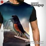 Kaos Burung Murai, Kaos Gambar Burung, Kaos Klub Burung Murai, Kicau Mania