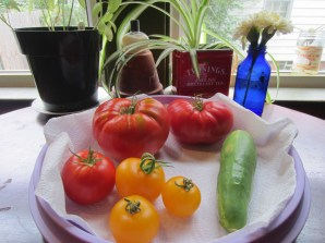 Tomato & cucumber harvest from yesterday