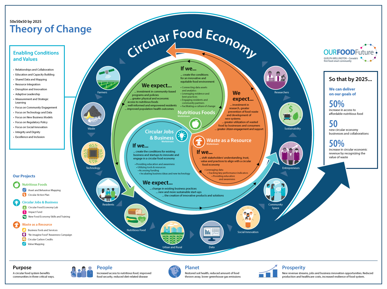 Theory Of Change Facilitation And Visualization