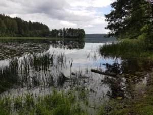 Landschap Aukstaitijos nationaal park