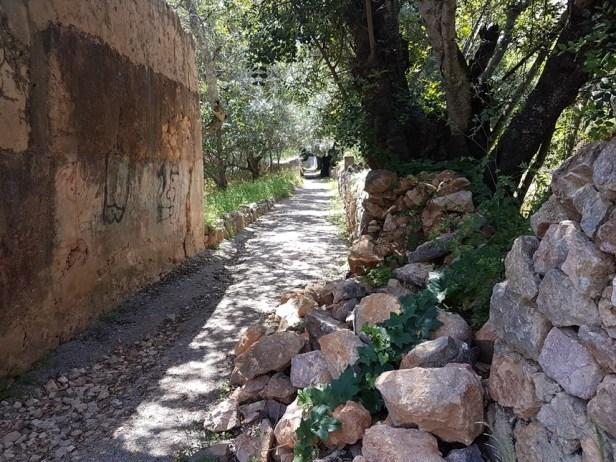 Sao Bras de Alportel Algarve