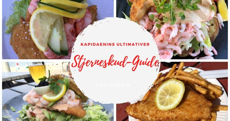 Der ultimative Stjerneskud-Guide: Fanø